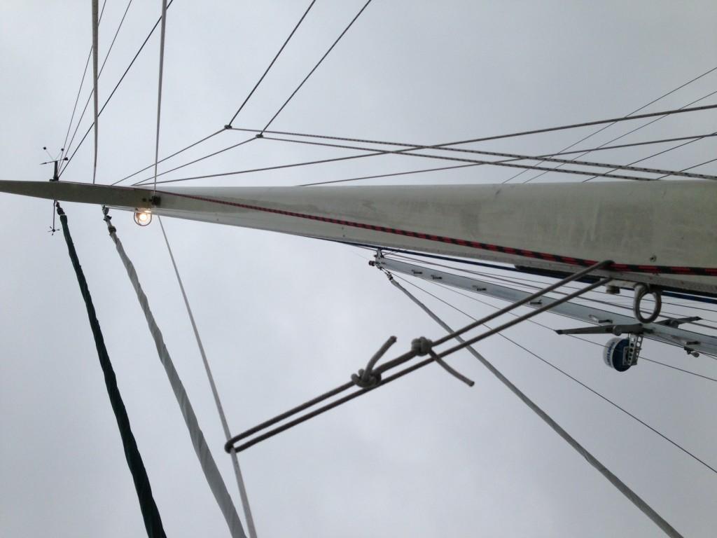 New Steaming Light/Deck Light Fixture and Guard