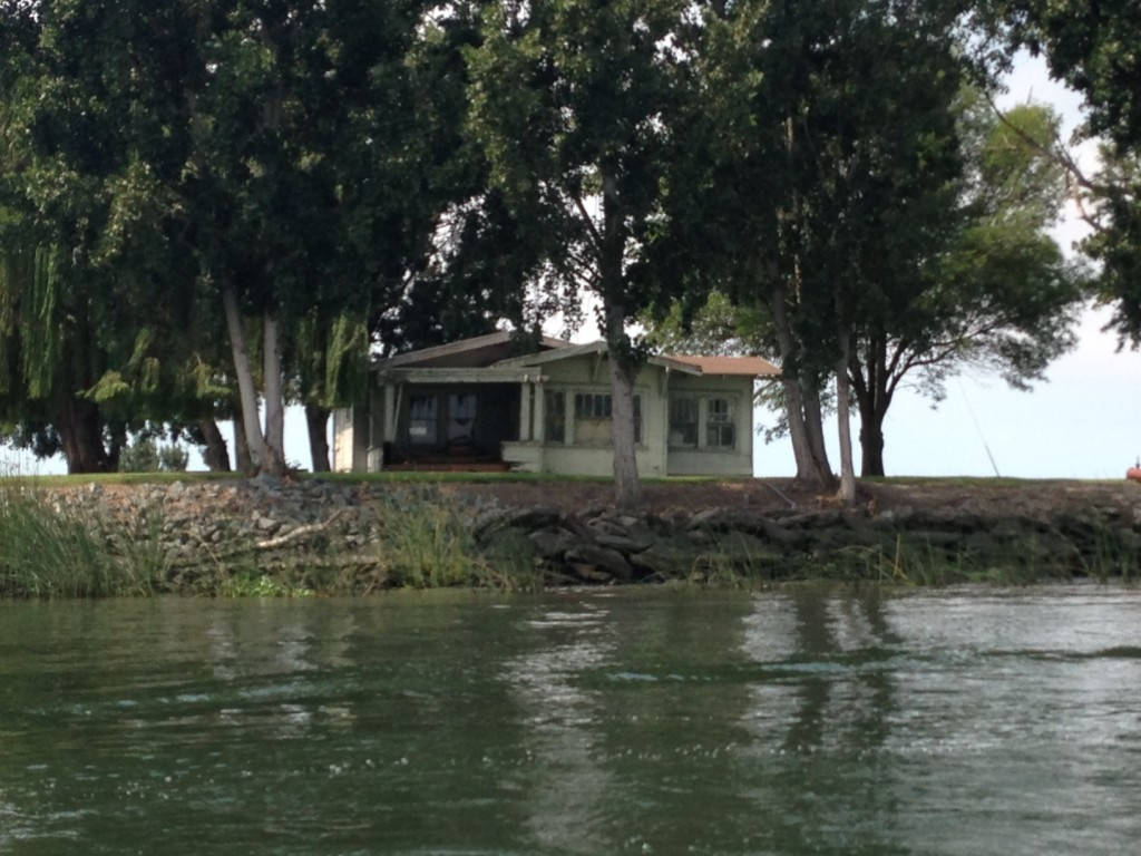 Modest house on the Delta - you see everything from mansions to humble abodes