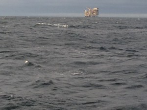 One  of many Oil platforms