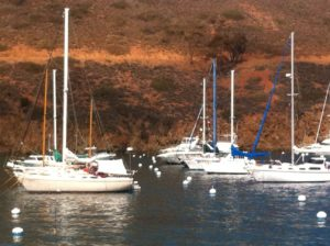 Boats on moorings near ours in Two Harbors