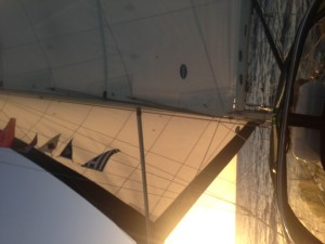 Sailing wing on wing in the last leg