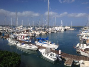 Our marina in La Paz - Cool Change is hidden behind some larger boats on the left