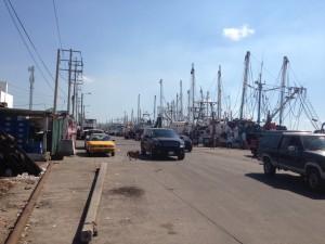 The shrimp fishing fleet of Mazatlan continues forever
