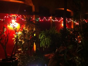 The garden in Topolo's