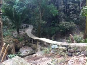 A Middle Earth-type bridge