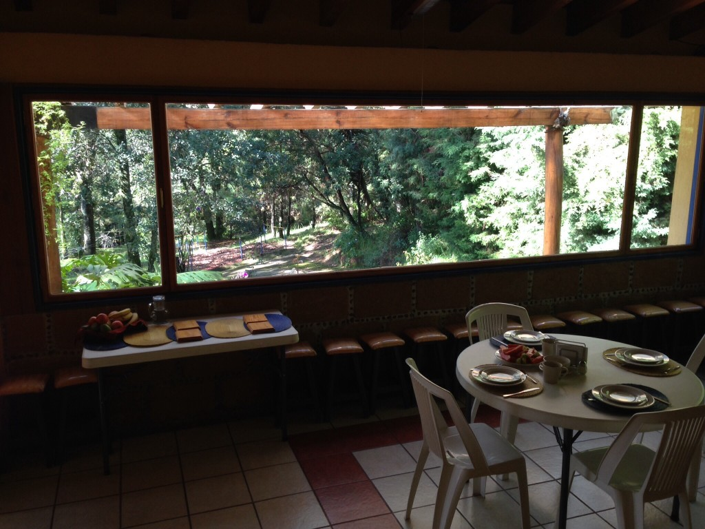From inside Delia and Eu's main retreat building looking out onto the wooded grounds at 6,000 feet in the mountains about Cuernavaca