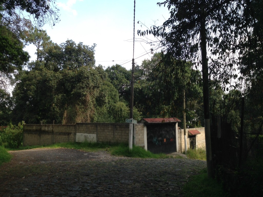 The corner of Calle Oso and Calle Zorra in the Fraccionamento Monte Cristo, where I lived until 1987.