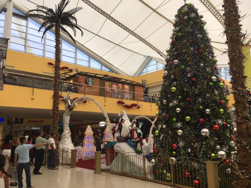 Christmas in one of the PV malls. Note the Starbucks and Haagen-Dazs in the background. Indigenous market, this is not!
