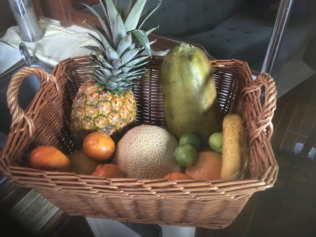Out typical fruit basket prior to an extended period away from a grocery store.